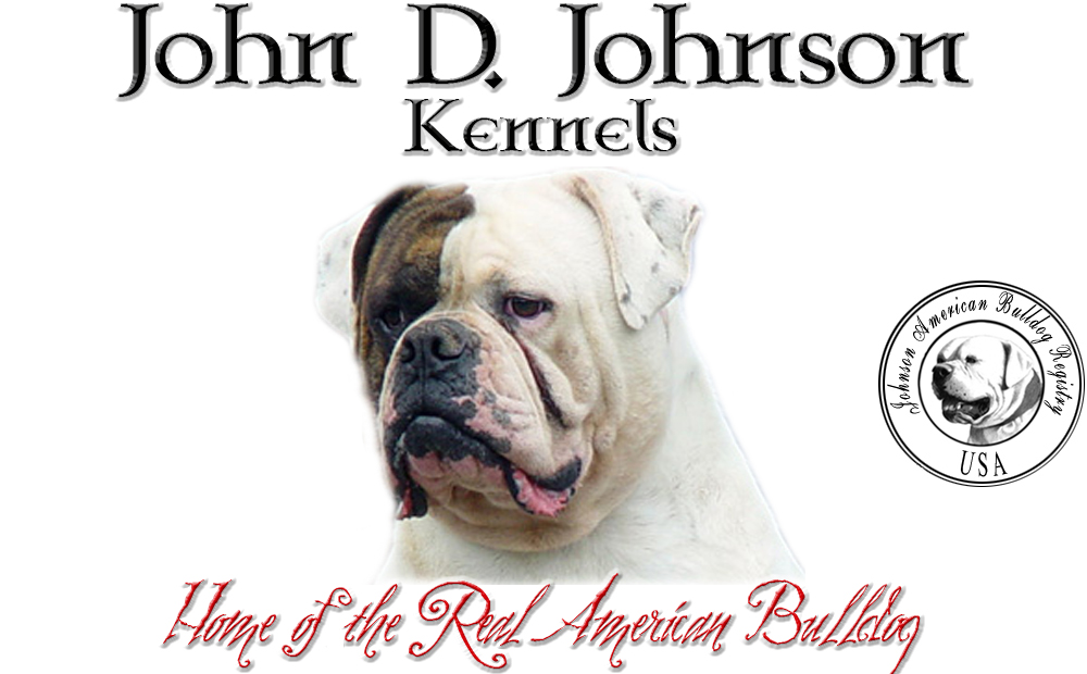 John D  Johnson Kennels - Home of the REAL American Bulldog!